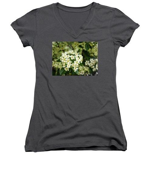 A Thousand Blossoms Women's V-Neck