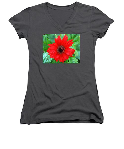 Women's V-Neck T-Shirt (Junior Cut) featuring the photograph A True Red by Sandi OReilly
