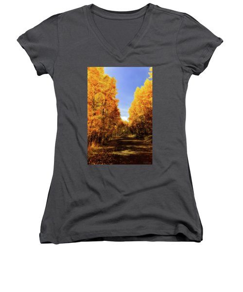 A Walk Down Memory Lane Women's V-Neck T-Shirt (Junior Cut) by Rick Furmanek
