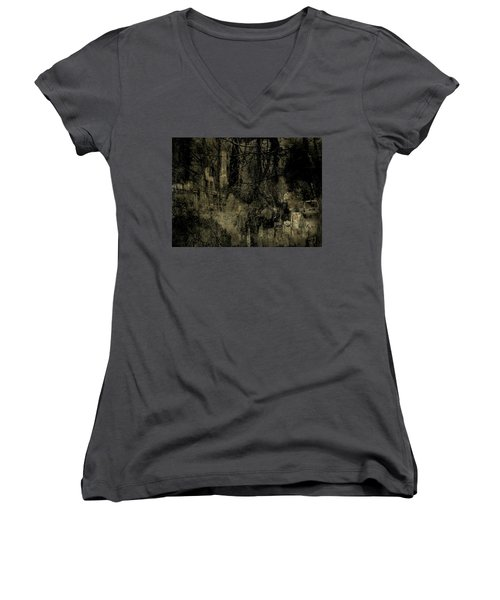 Women's V-Neck T-Shirt (Junior Cut) featuring the photograph A Walk In The Park by Jim Vance