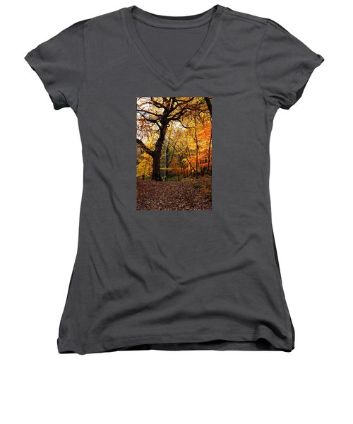 Women's V-Neck T-Shirt (Junior Cut) featuring the photograph A Walk In The Woods 2 by Steven Clipperton