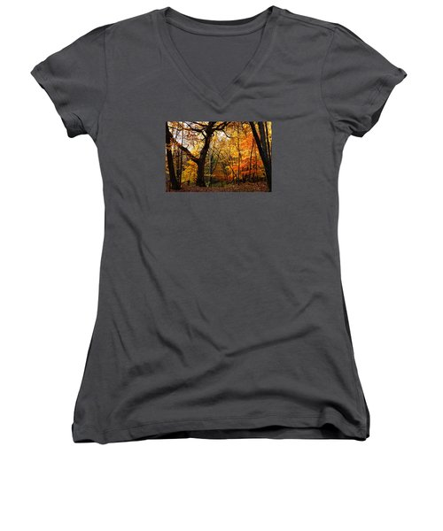 Women's V-Neck T-Shirt (Junior Cut) featuring the photograph A Walk In The Woods 3 by Steven Clipperton