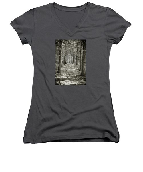 A Walk In Walden Woods Women's V-Neck T-Shirt (Junior Cut) by Ike Krieger