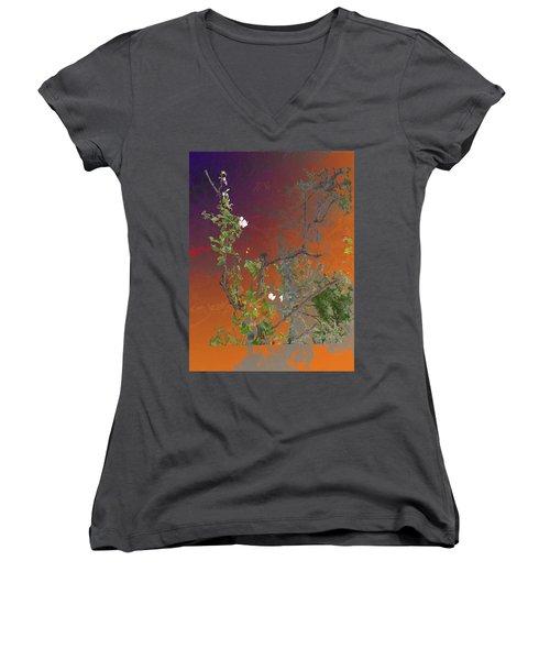 Abstract Flowers Of Light Series #13 Women's V-Neck