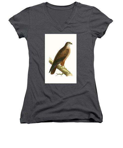 African Buzzard Women's V-Neck T-Shirt