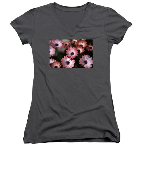 African Daisy Zion Red Women's V-Neck
