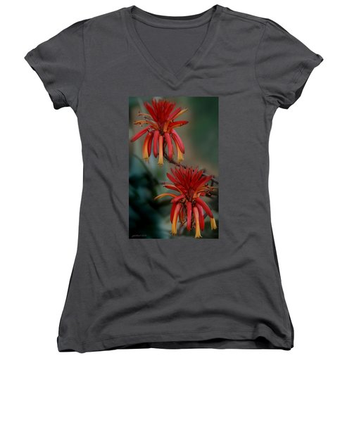 African Fire Lily Women's V-Neck (Athletic Fit)