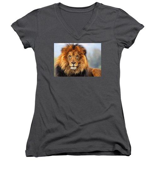 African Lion 1 Women's V-Neck T-Shirt (Junior Cut) by Ellen Henneke