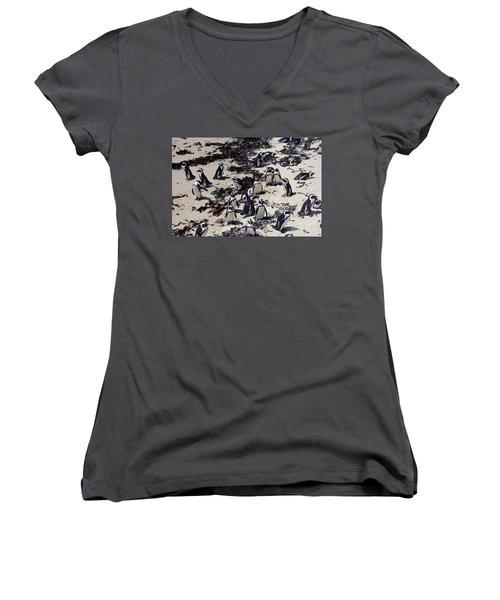 Women's V-Neck T-Shirt (Junior Cut) featuring the digital art African Penguin 3 by Eva Kaufman