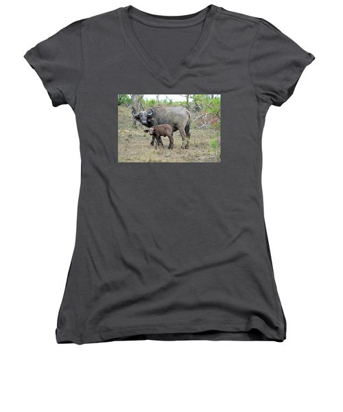 African Safari Mother And Baby Buffalo Women's V-Neck T-Shirt (Junior Cut)