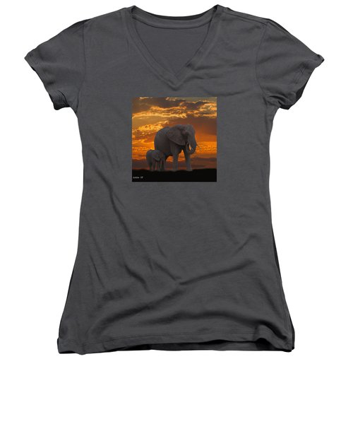 African Sunset-k Women's V-Neck (Athletic Fit)