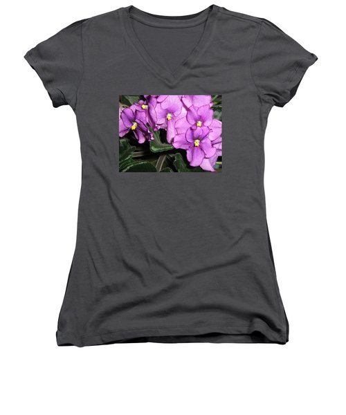 African Violets Women's V-Neck T-Shirt