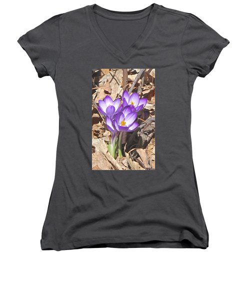After The Snow Has Gone Women's V-Neck