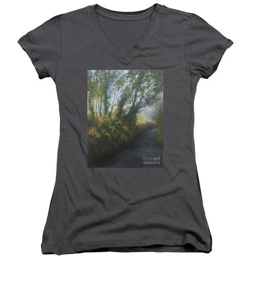 Afternoon Walk Women's V-Neck T-Shirt