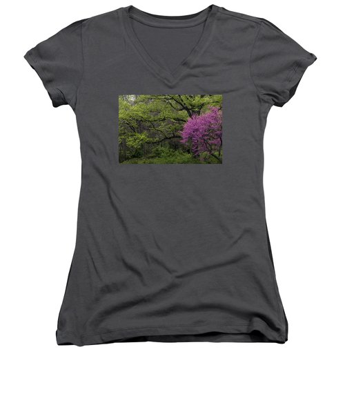 Women's V-Neck T-Shirt (Junior Cut) featuring the photograph Afton Virginia Spring Red Bud by Kevin Blackburn