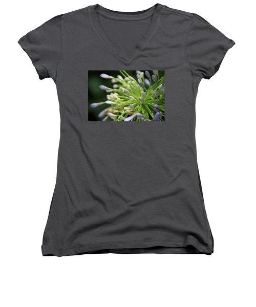 Agapanthus, The Spider Flower Women's V-Neck T-Shirt (Junior Cut) by Yoel Koskas