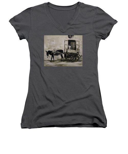 Aladin Women's V-Neck T-Shirt