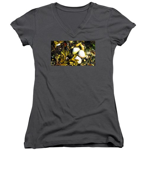 Alaska Clams Women's V-Neck T-Shirt