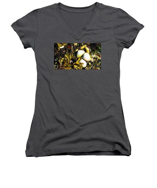 Alaska Clams Women's V-Neck T-Shirt