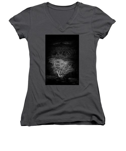 Women's V-Neck T-Shirt (Junior Cut) featuring the photograph Albezia Tree by Roger Mullenhour
