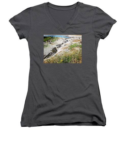 Alder Lake Stumps Women's V-Neck T-Shirt