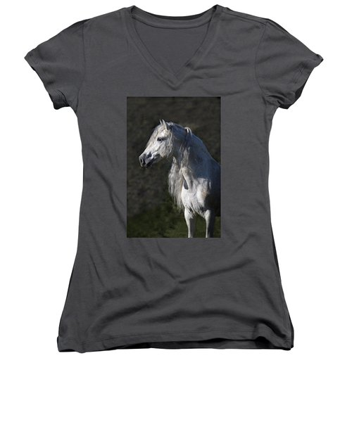 Alejandro Women's V-Neck T-Shirt