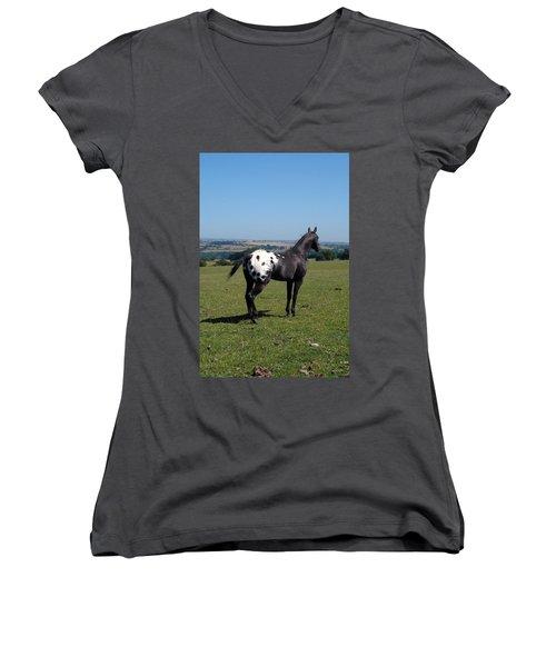 All He Surveys Women's V-Neck T-Shirt