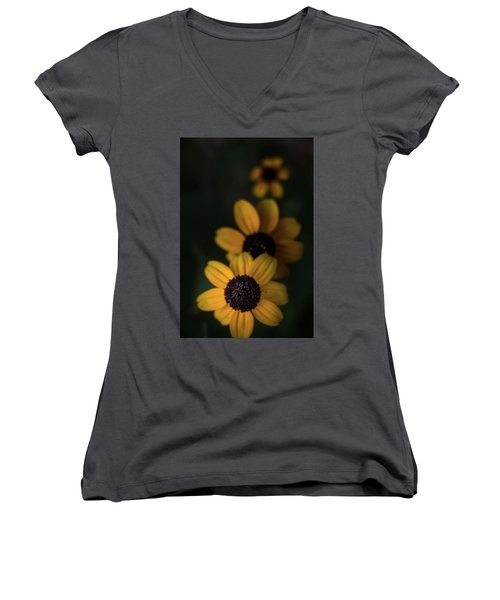 All In A Row Women's V-Neck T-Shirt