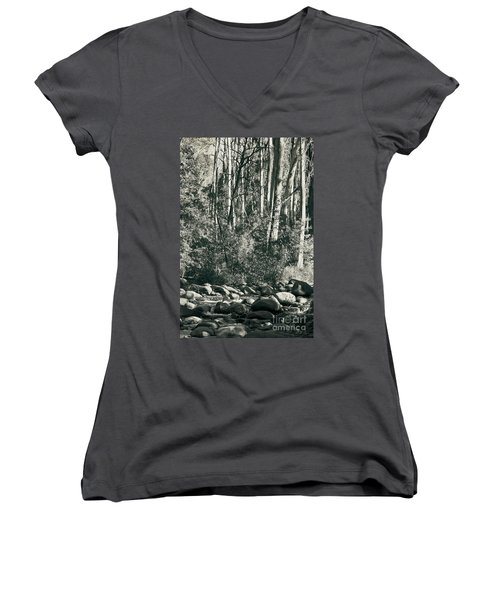 Women's V-Neck T-Shirt (Junior Cut) featuring the photograph All Was Tranquil by Linda Lees
