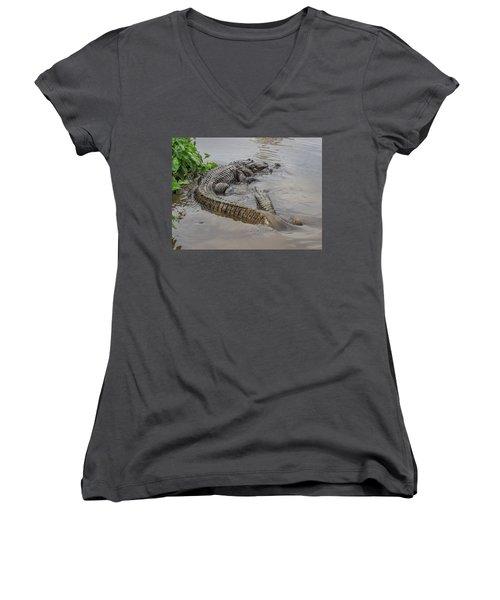 Alligators Courting Women's V-Neck