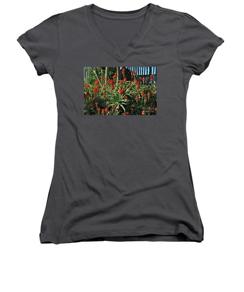 Aloe Choir Women's V-Neck (Athletic Fit)