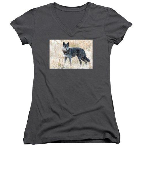 Alpha Female Women's V-Neck T-Shirt