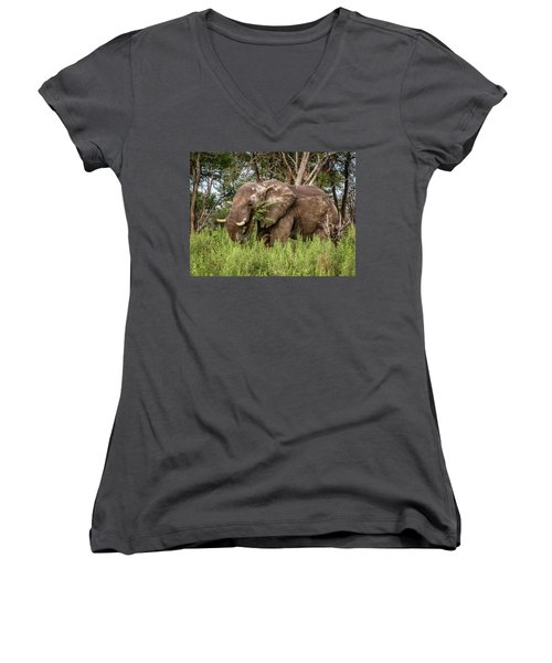 Alpha Male Elephant Women's V-Neck (Athletic Fit)