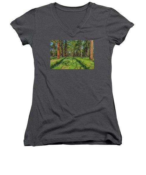 Alpine Flowers Women's V-Neck T-Shirt