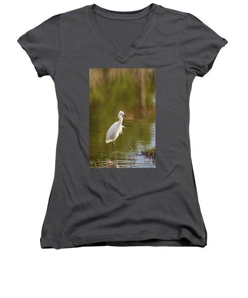 Always Watching Women's V-Neck T-Shirt
