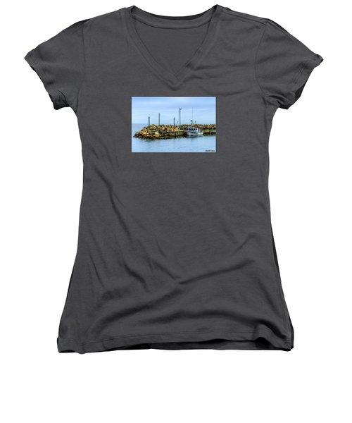 Amanda's Pride At Feltzen South  Women's V-Neck T-Shirt (Junior Cut) by Ken Morris