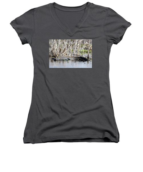 Women's V-Neck T-Shirt (Junior Cut) featuring the photograph American Alligator by Gary Wightman