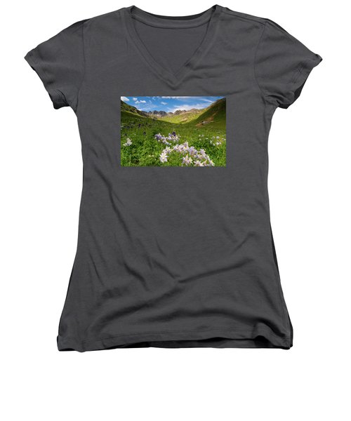 American Basin Women's V-Neck T-Shirt (Junior Cut) by Steve Stuller