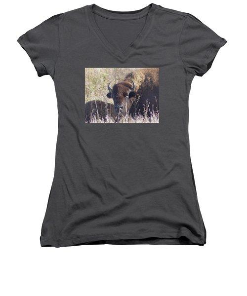 American Bison Women's V-Neck T-Shirt