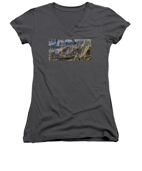 American Bittern Women's V-Neck (Athletic Fit)
