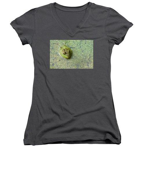 American Bullfrog Women's V-Neck T-Shirt