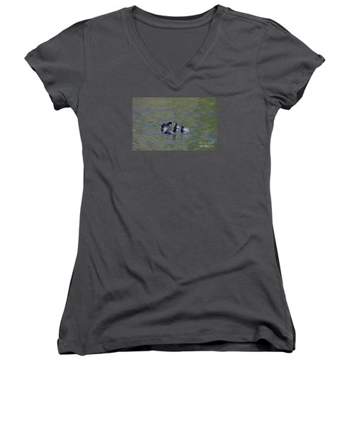 Women's V-Neck T-Shirt (Junior Cut) featuring the photograph American Coots 20120405_278a by Tina Hopkins