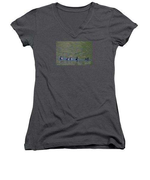 American Coots 20120405_280a Women's V-Neck T-Shirt (Junior Cut) by Tina Hopkins