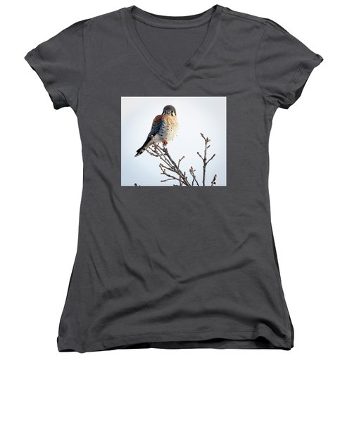 American Kestrel At Bender Women's V-Neck (Athletic Fit)