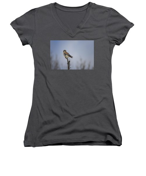 American Kestrel Women's V-Neck T-Shirt