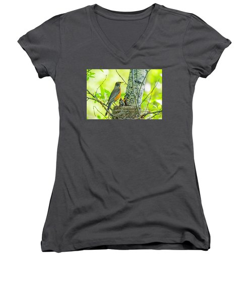 American Robin Feeding Chicks Women's V-Neck T-Shirt
