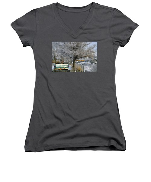 Americana And Hoarfrost Women's V-Neck (Athletic Fit)