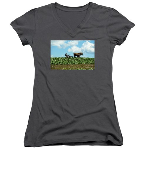 Amish Farmer With Horses In Tobacco Field Women's V-Neck