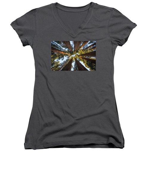 Amongst The Giant Sequoias Women's V-Neck T-Shirt (Junior Cut) by Alpha Wanderlust