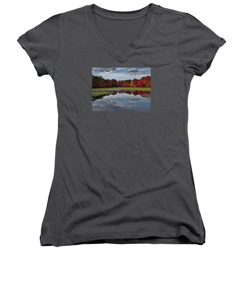 An Autumn Day Women's V-Neck T-Shirt (Junior Cut)